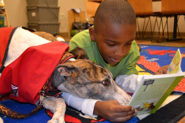 READing Paws Program at the Library | PLAYGROUND Magazine